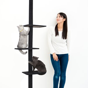 Three Tier Floor-to-Ceiling Cat Tree (Charcoal)