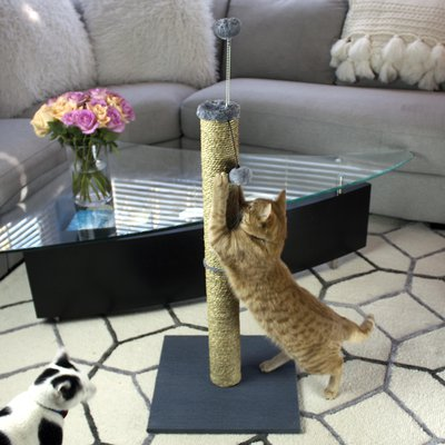 Tall Seagrass Scratching Post with Dangle Toy and Spring Toy 2 Pack
