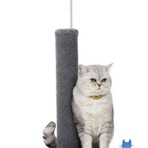 "20"" Carpet Scratching Post - Grey - 2 Pack"